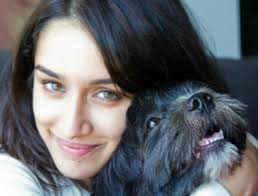 affenpinscher india 25 bollywood actors and their pets take a look at these pictures