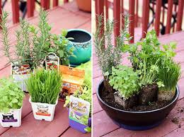 how to make an indoor herb garden zandalus net