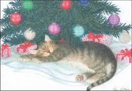 cat cards cat cards cat cards cats cat