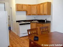 new york apartment 1 bedroom apartment rental in lower east side