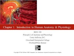 Study Guide Anatomy And Physiology 1 Chapter 1 Study Guide Questions Ppt Video Online Download