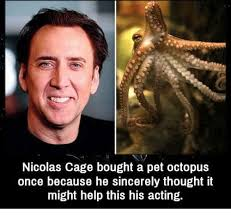 Nicolas Cage Memes - nicolas cage bought a pet octopus once because he sincerely thought