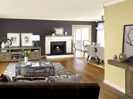 color ideas for living room wall imanada pictures painting a