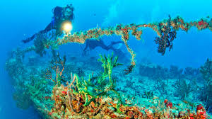 Florida Artificial Reefs Map by Artificial Reefs Archives Xperience Florida Marine
