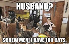 Cat Lady Meme - crazy cat lady dating site get catster in your inbox