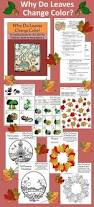 Foliage Map 27 Best Fun Fall Facts Images On Pinterest Fall Fall Leaves And
