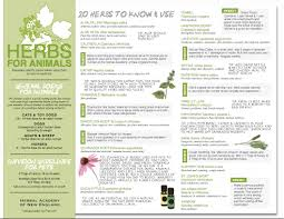 herb chart free herbs for animals chart herbal academy blog