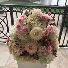 florist naples fl focus floral flowers naples fl weddingwire