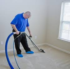 how to vacuum carpet how to green clean your carpet underlay ecofriend