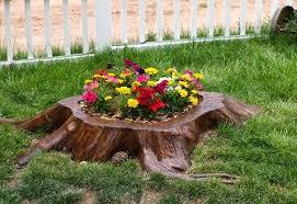 Flower Planter Ideas by 19 Blazing Tree Stump Planter Ideas That U0027ll Impress You Balcony