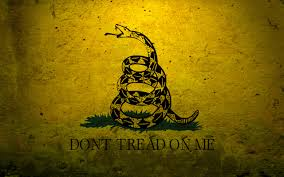 Moultrie Flag Military Flags Usa Navy Concrete Dont Tread On Me Gadsden Flag