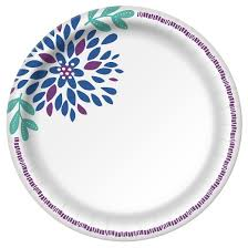 paper plates dixie everyday 10 1 16 paper plates 80ct target