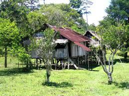 She Shack by Guides Iquitos Peru Eco Vagabond Lodge Dave U0027s Travel Corner