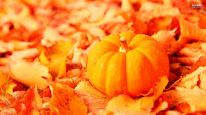 pumpkin screensavers fall leaves and pumpkins wallpaper