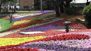 Flower Gardens Wallpapers - epcot flower and garden wallpaper