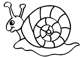 coloriage animaux  dmatechinfo