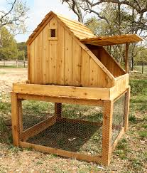 backyard chicken coop diy home outdoor decoration