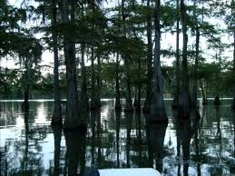 Louisiana lakes images 32 best louisiana lakes images louisiana lake jpg
