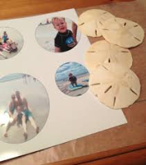 photo sand dollar ornaments the crafting junkie