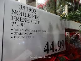 christmas splendi costco christmas tree truck fresh cut noble