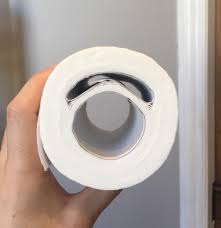 Toilet Paper Roll Meme - put me like 盞 my toilet paper roll has an extra cardboard tube in it
