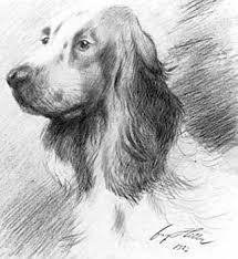 hitler dogs