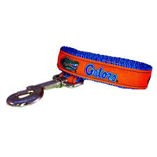 amazon com ncaa florida gators dog leash team color large