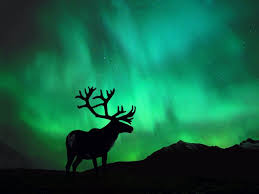 northern lights wallpapers 48 full hdq northern lights pictures