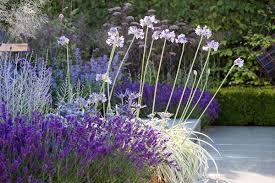 Garden Ideas Pictures Plant Combination Ideas Garden Style Mediterranean Garden