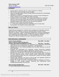 System Analyst Sample Resume Vendor Management Resume Resume For Your Job Application