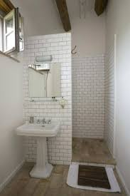 Bathroom Ideas For Basement Articles With Basement Bathroom Remodel Ideas Tag Basement Small