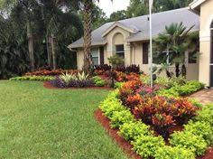 Tropical Landscape Ideas by Florida Landscaping Ideas For Front Of House Google Search