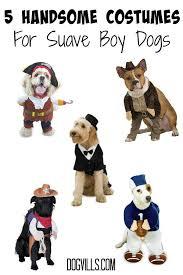 Boy Dog Halloween Costumes 5 Handsome Halloween Dog Costumes