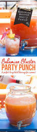 bahamian blaster party punch drink cocktail recipes and drink