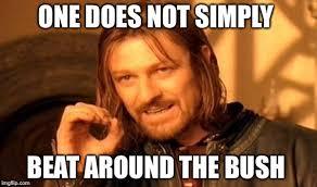 Bush Memes - one does not simply beat around the bush meme