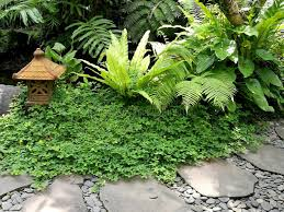 balinese garden ornament and path stock image image 82741903