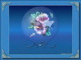 Soft Blue Color 226699 Color Wallpapers Come Sail Away Cactus Blue Ocean Sunlight