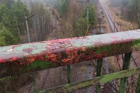 how to bring a dead plant back to life ruined chernobyl nuclear plant will remain a threat for 3 000