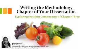 Writing the Methodology Chapter of Your Dissertation