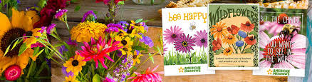 cheap seed packets promotional flower seed packets american