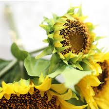 Sunflower Bouquets Discount Wholesale Sunflowers Bouquets 2017 Wholesale Sunflowers