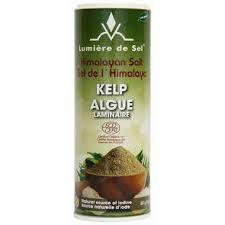 cheap himalayan salt l buy lumiere de sel himalayan salt organic kelp salt shaker at well