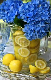 123 best blue and yellow images on pinterest color palettes