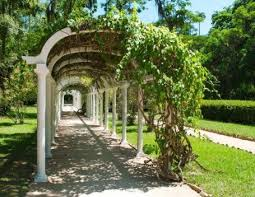 green plant covered pergola idea for fresh look creating