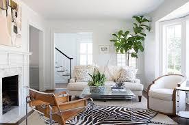 Zebra Area Rug Zebra Rug In Living Room Coma Frique Studio 5af16cd1776b