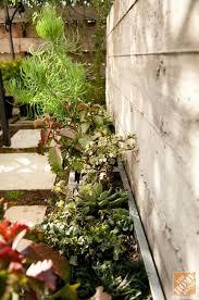 Concrete Planters Home Depot by 132 Best Backyard Ideas Images On Pinterest Backyard Ideas