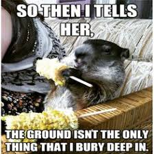 Groundhog Meme - groundhog memes groundhog memes next image groundhog day