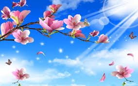 butterflies on flowers tree spring