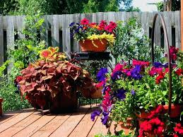 patio gardening for beginners small patio garden ideas potted