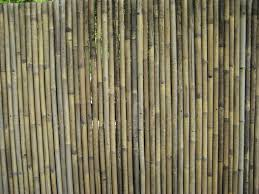 exterior design midwest bamboo fencing for your garden design